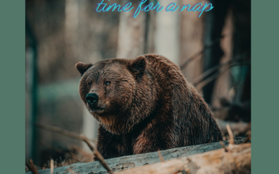 Take Time to Hibernate